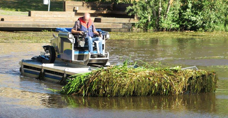 aquatic weed or plant removal